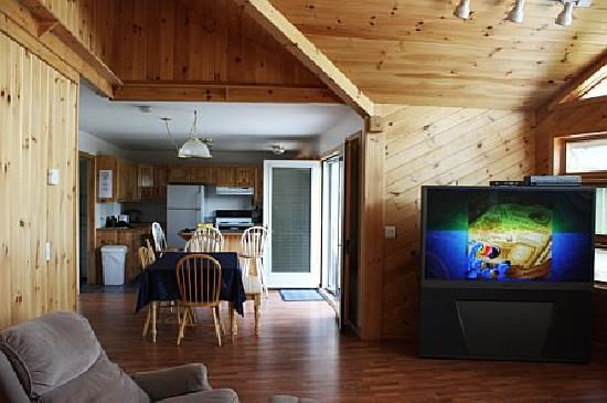 Snowfield Cabins : great room and kitchen