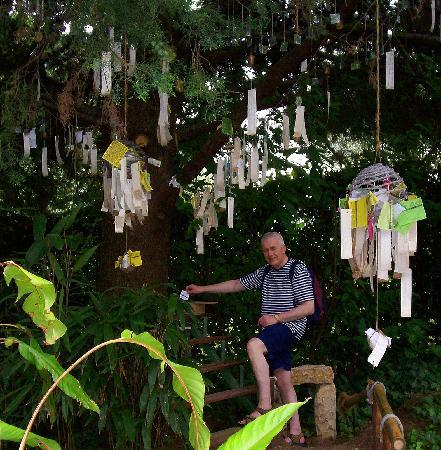Heller Garden : Leave a wish or prayer here