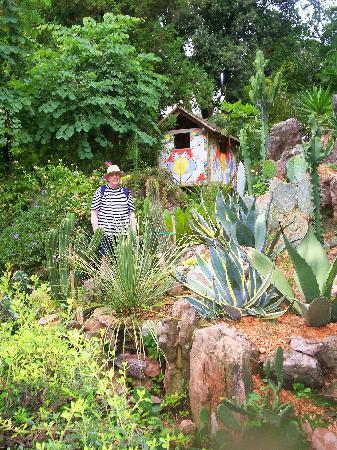 Heller Garden : Garden view