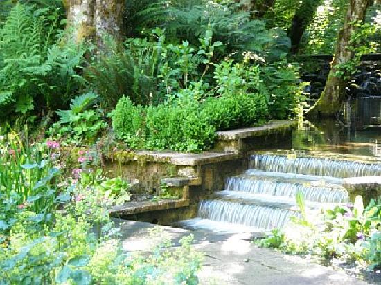 View Into The Secret Garden Picture Of Belknap Hot