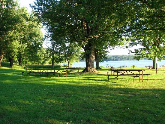 Blanchardville, WI: Picnic areas near the beach