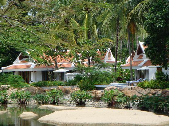 Santiburi Koh Samui : view of the villas with swimming pools from main walkway-no privacy
