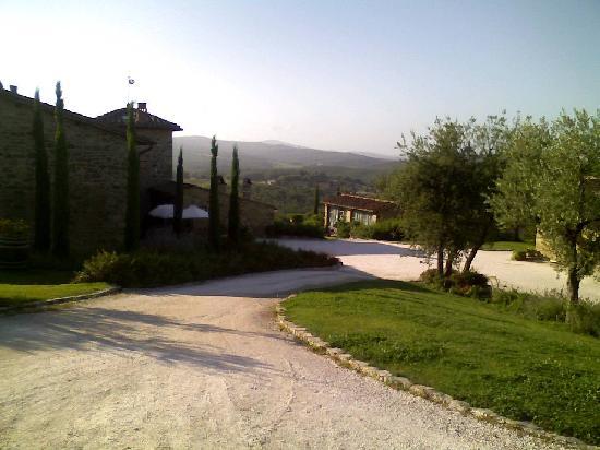 Casa Cornacchi Country House: Morning view
