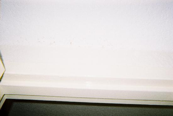 Days Inn Orlando Convention Center/International Drive: Moldy-looking spots along a wall