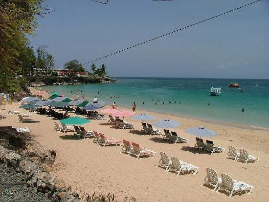 Store bay tobago all you need to know before you go for Storage bay