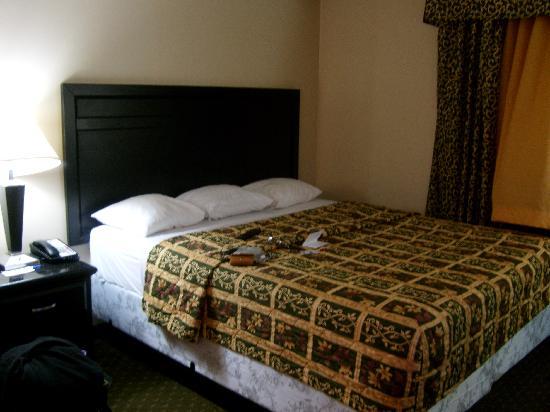 Photo of Comfort Inn Near Universal Studios Hollywood Los Angeles
