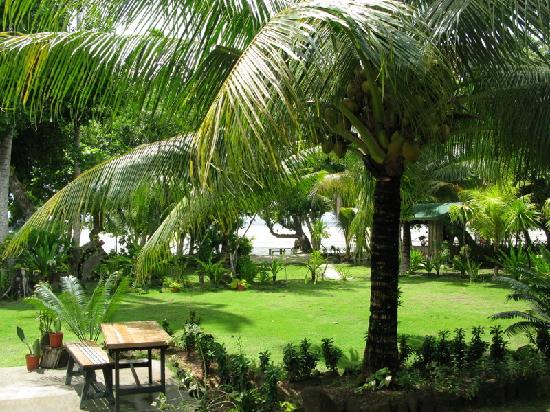 North Beach Cottages: the garden