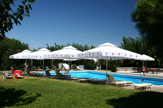 Ionian Beach Bungalows: Pool