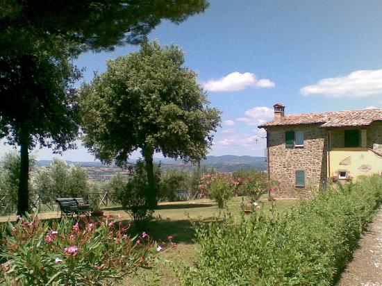 Torgiano Italy  city photo : ... of Il Poggio delle Ginestre Casa Vacanze, Torgiano TripAdvisor