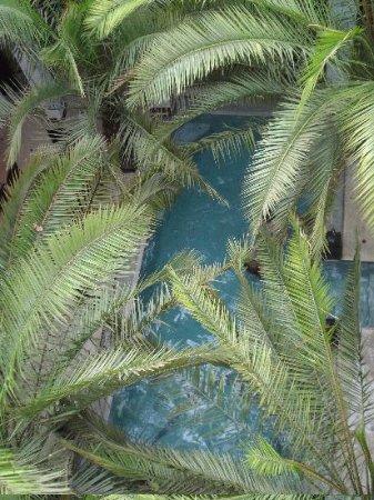 Riad Fabiola: La piscine, vue d'en haut