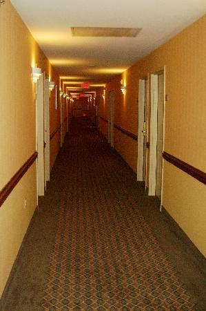 Comfort Inn: Second floor hallway