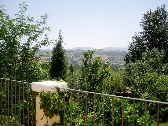 Hotel La Fuente De La Higuera: Deluxe suite terrace view
