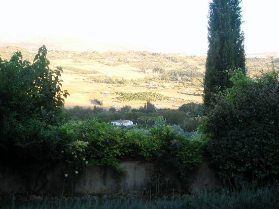 Hotel La Fuente De La Higuera: Dining terrace view
