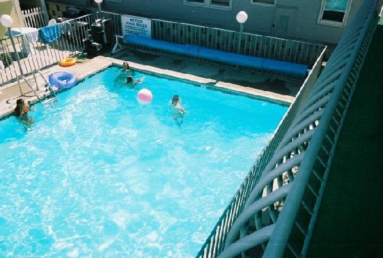 Sandpiper Motel: Great Pool view