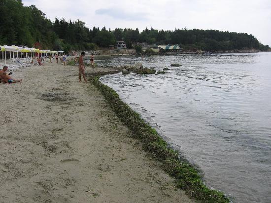 Sol Nessebar Palace: Beach