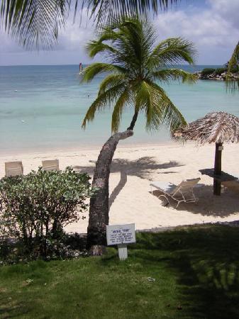 Blue Waters Antigua: Hugo