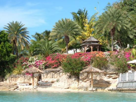 Blue Waters Antigua : Gardens