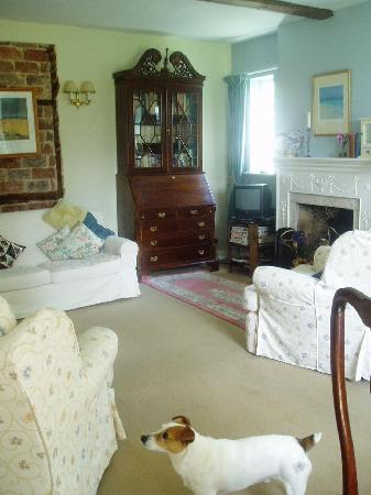 Stapleton Cottage : Guest sitting room with Toby the dog