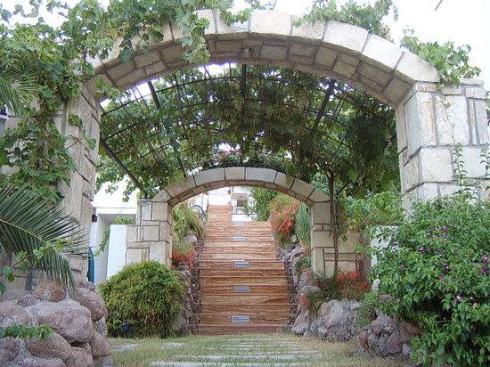 Apartments Ozukara: Steps 2
