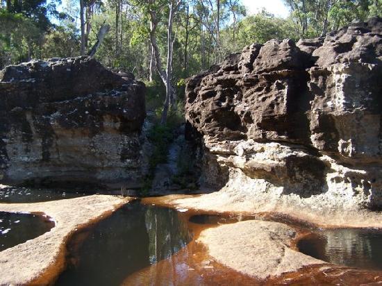 Blackwater, Australia: rock pools