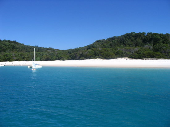 Whitsunday Island, Avustralya: Whitehaven Beach
