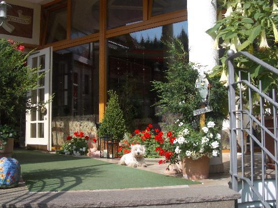 Wolfach - St. Roman, Alemanha: El westy de los dueños