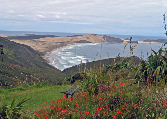 North Island, Nova Zelândia: View from Cape Reinga down to 90 Mile Beach
