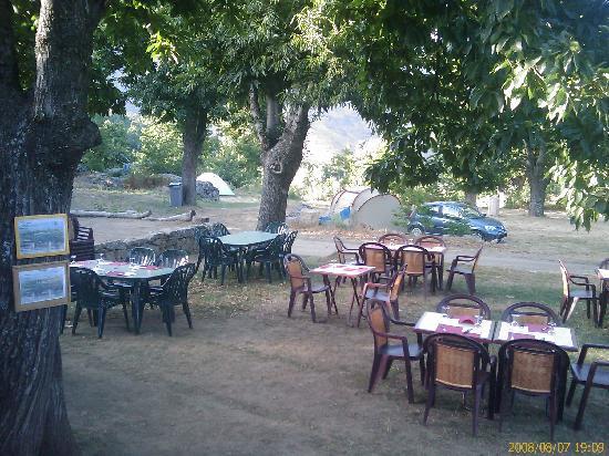 Camping U Monte Cintu : terrasse resto