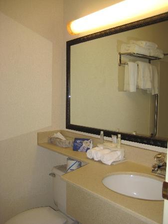 Holiday Inn Express Hotel & Suites Burlington South: Bathroom #2