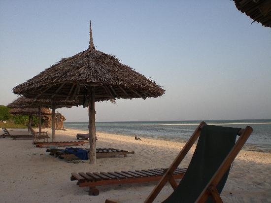 Jacaranda Beach Resort: la parte della spiaggia accanto al campetto da beach volley..