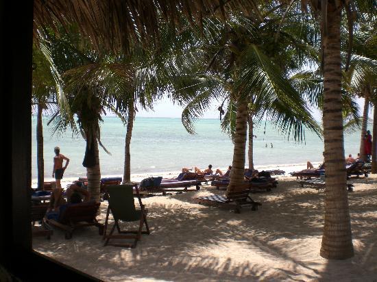 Jacaranda Beach Resort: la zona sdraio.. ogni mattina ti portavano il materassino comodo all'arrivo.. troppo viziati.. =