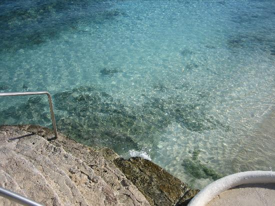 Presidente Inter-Continental Cozumel Resort & Spa: Clearest water...outside Caribena