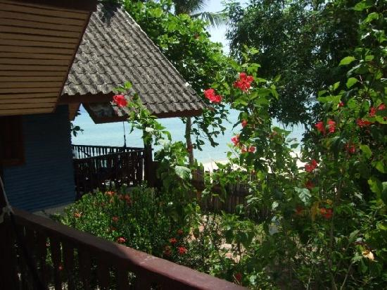 Shambala Beach Bungalows: view from our bungalow