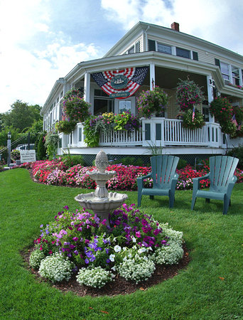 By The Sea Bed and Breakfast: Beautiful fowers!
