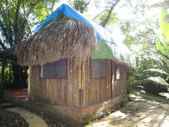 Jungle Palace: Cabana