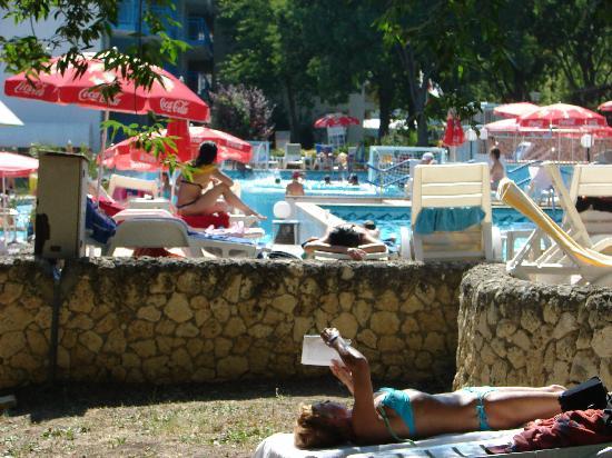 Hotel Orchidea: apercu piscine