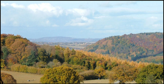Forest of Dean & Wye Valley