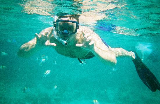 Home Sweet Home Resort: Snorkeling