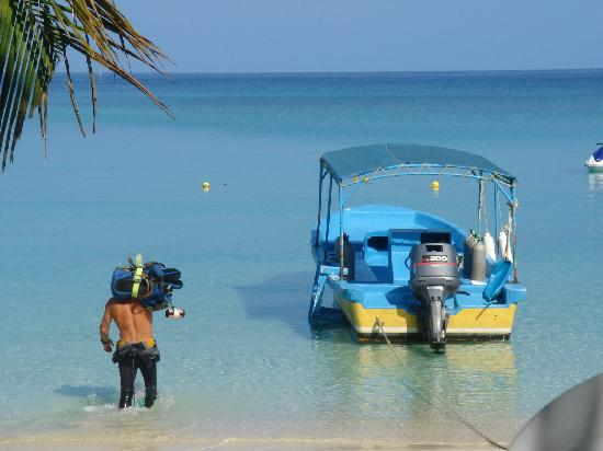 Bananarama Beach and Dive Resort: The dive boat.