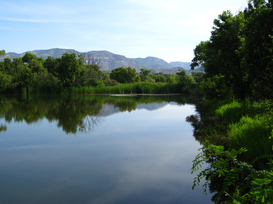 The pond on the Gila Farm Preserve