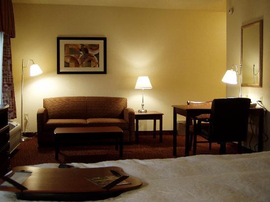 Hampton Inn & Suites Muncie: sitting area