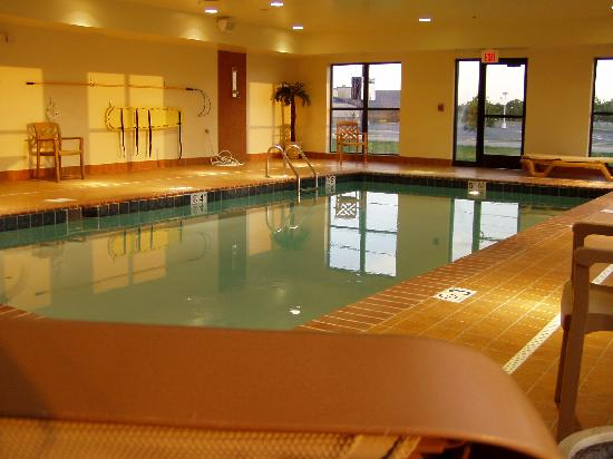 Hampton Inn & Suites Muncie : pool