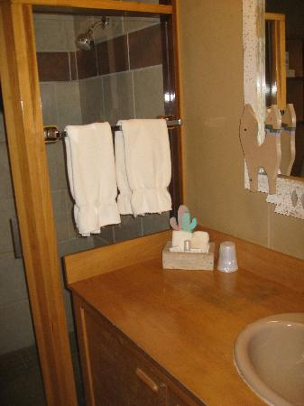 Foothills Safari Camp at Fossil Rim: Bathroom in the tent