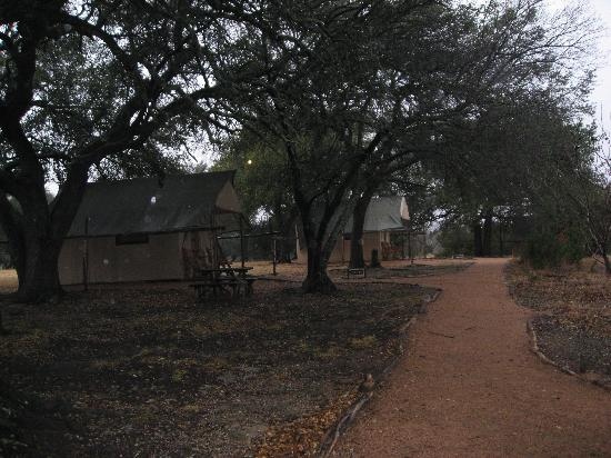 Foothills Safari Camp at Fossil Rim: Pathway to the tents
