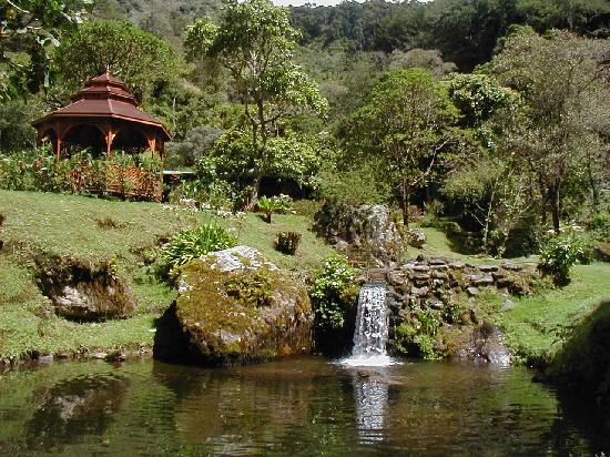 Trogon Lodge San Gerardo de Dota : waterfall on property