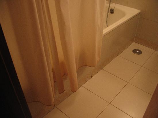 Villa Rio Hotel : The shower curtain.