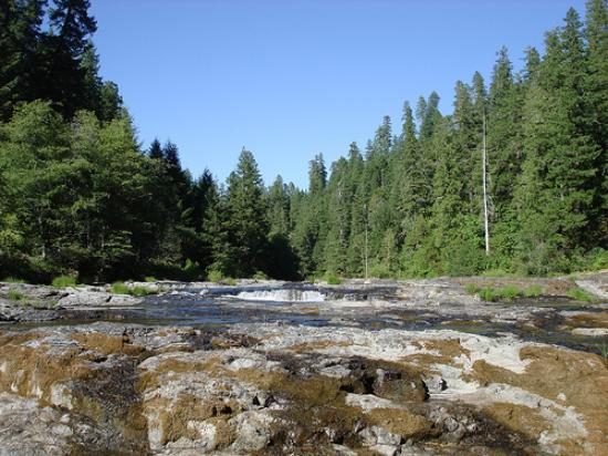 Steamboat Falls Campground : Scenery