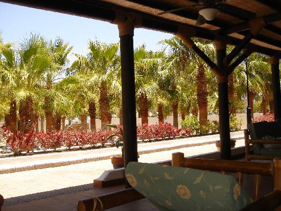 Blue Sea Costa Bastián: El porche con el palmeral