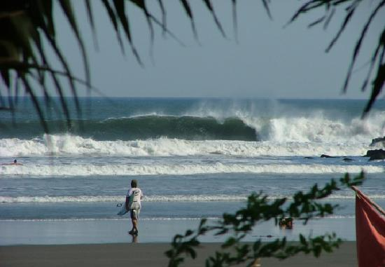 Shaka Beach Retreat: more Surf...