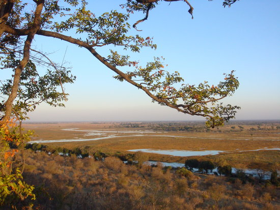 Muchenje Safari Lodge: view across the plains
